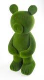 медведь или медведь зеленого цвета на предпосылке Стоковое Фото
