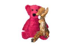 Медведь и лоси Стоковые Фотографии RF