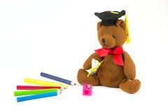 Медведь и покрашенные карандаши Стоковое Фото