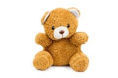 медведь милый немногая Стоковые Фото