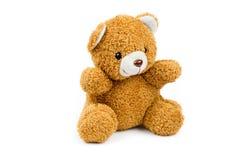 медведь милый немногая Стоковая Фотография