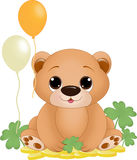 Медведь дня patricks St Стоковая Фотография