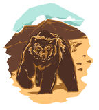 медведь одичалый Стоковая Фотография