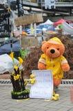 Медведь протеста Стоковая Фотография