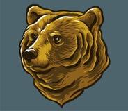 Медведь чела Стоковое Изображение