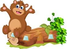 Медведь шаржа сидя на деревянном Стоковое Фото