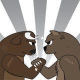 Медведь Bull подготавливая воевать Стоковое Фото