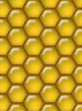мед гребня предпосылки Стоковое фото RF
