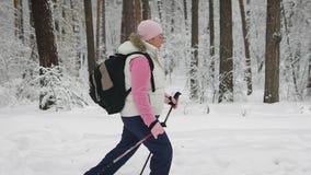 Медленная съемка на женщине которая идет через снежный лес вокруг ее растет высокорослые и массивнейшие деревья Женщина тепло оде сток-видео