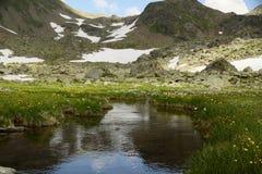 Медленно бежать высокогорный поток Стоковая Фотография