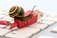 Медленный доступ в интернет Стоковые Фото