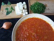 Мелисса лука томата тофу, варя для вегетарианской диеты стоковые фото