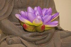 Медитация Стоковые Фото