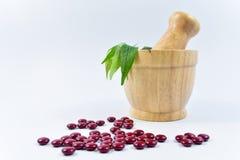 Медицина и травяное в деревянном миномете на белой предпосылке Стоковое Фото