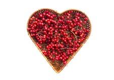 Медицинская здоровая ягода калины в плетеной изолированной корзине формы сердца Стоковые Изображения RF