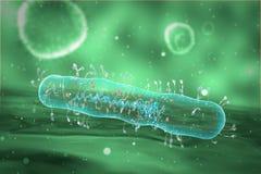 Медицинская иллюстрация бактерий Стоковая Фотография