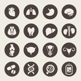 Медицинские значки. Человеческие органы иллюстрация штока
