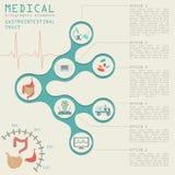 Медицинский и здравоохранение infographic, infog кишечно-желудочного тракта бесплатная иллюстрация