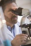 Медицинский профессиональный смотреть через микроскоп стоковые изображения