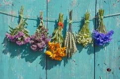 Медицинский пук цветков и заводов хлопьев на старой деревянной стене Стоковое Изображение RF
