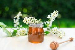 Мед и акация цветут с деревянным ковшом на предпосылке сада Стоковые Изображения