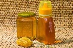 Мед и солнцецвет Стоковые Фотографии RF