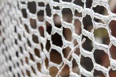 Мелкоячеистая сетка с льдом стоковое изображение rf