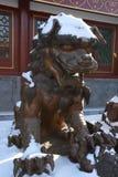 Медный лев Стоковые Фото