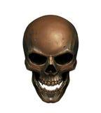Медный череп Стоковые Фотографии RF