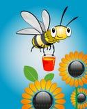 мед пчелы Стоковая Фотография