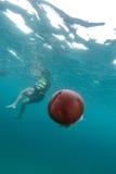 медузы и турист в лорде Loughbolough или острове дракона моря, Стоковые Фото