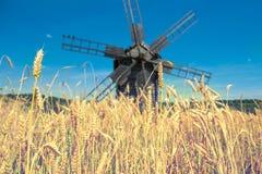 Мельница на пшеничном поле Стоковые Изображения