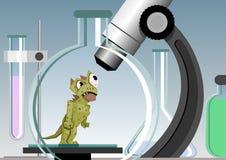 микроб Стоковое Изображение