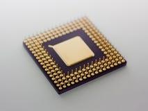 микропроцессор стоковая фотография rf