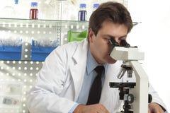 микроскопическое исследование вниз Стоковые Изображения