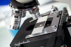 микроскопическое исследование лаборатории научное Стоковые Изображения