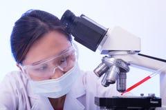 Микроскопическое исследование лаборатории Стоковое фото RF