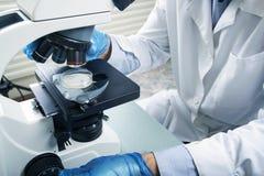 микроскоп лаборатории предпосылки над белизной Предпосылка научных и здравоохранения исследования стоковое фото