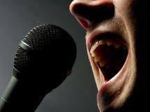 микрофон человека пея к Стоковая Фотография