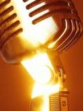 микрофон elvis солнечный Стоковое Фото