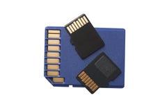 2 микро- карточки SD на карточке SD размера регулярного Стоковая Фотография RF