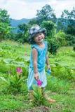 Милая азиатская девушка при тюльпаны Сиама зацветая в лесе Стоковое фото RF