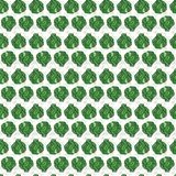 Милая безшовная зеленая картина свежих вилок капусты и пуки трав - петрушка и укроп на белой предпосылке иллюстрация вектора