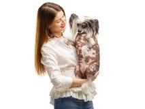 Милая девушка держа китайскую Crested собаку в ее оружиях и смотря ее с улыбкой белизна изолированная предпосылкой стоковые изображения rf