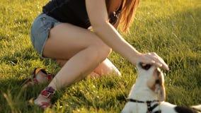Милая девушка играет с ее собакой на лужайке в парке акции видеоматериалы