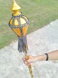 Милая золотая палочка Стоковое Фото