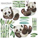 Милая иллюстрация акварели панды шаржа Стоковое Изображение RF
