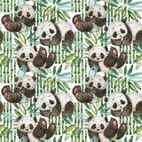 Милая иллюстрация акварели панды шаржа Стоковые Изображения RF