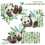 Милая иллюстрация акварели панды шаржа Стоковые Фото