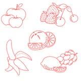 Милая иллюстрация вектора органических плодоовощей и ягод Здорово бесплатная иллюстрация